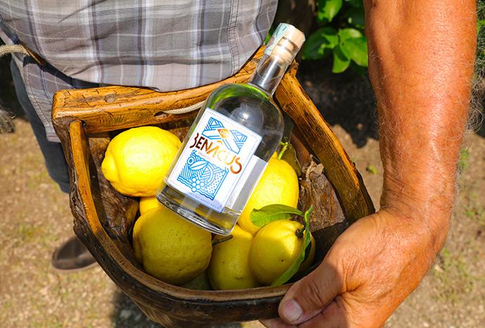 benacus-gin-slider1