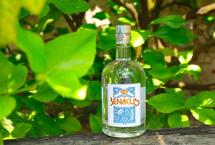 benacus-gin-slider2