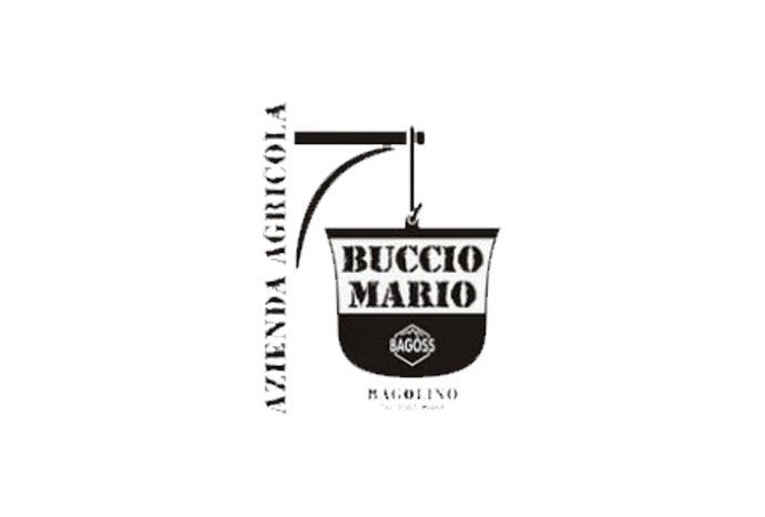 buccio-mario-slider-1