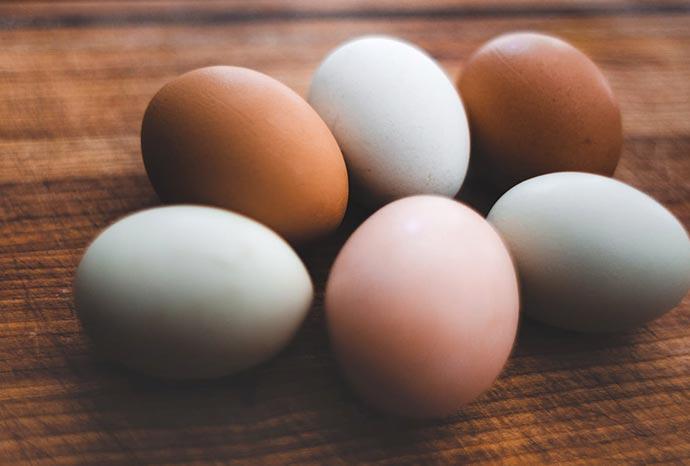 garda-egg-slider-4